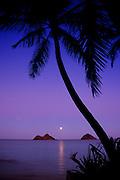 Full moon rise, Lanikai Beach, Oahu, Hawaii