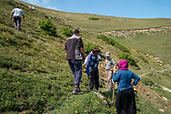 Yilmaz Civelek (centre) 47, at home in Alaca Yaylası, helping to dig a well in his home village up in the Pontic mountains, where communicating via whistling is common, due to the large distances between homes, and the mountainous landscape.