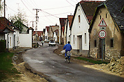 The Tibor Gal (GIA) winery in Eger (famous for Egri Bikaver): The street in Eger where the winery is located. Typical Eger houses on the winding road. Tibor Gal is one of the leading growers and wine makers in Eger. The company was founded in 1993 in collaboration with Nicolo Incisa della Rochetta (Sassicaia, Italy) and Alpine from Germany