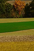Berks Co., PA Family farms and multi-crop fields, Berks County, PA, USA