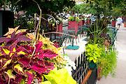 Outdoor restaurant downtown near the Dearborn Street Subway Station. Chicago Illinois USA