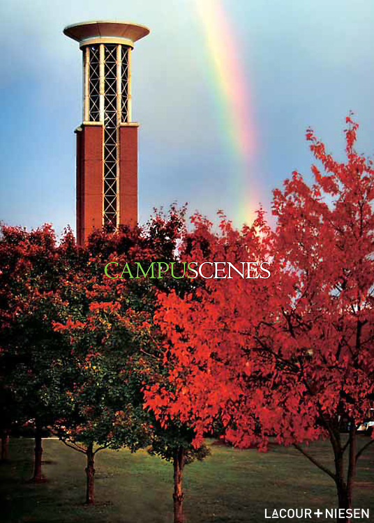 Campus Scenes, Lipscomb University, Nashville Tenn. Design by Glass+Gold (glassandgold.wordpress.com)