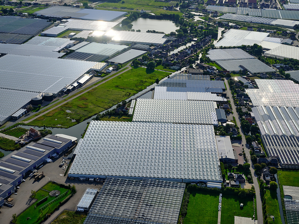 Nederland, Zuid-Holland, Gemeente Westland, 14-09-2019; Glazen stad, Kassengebied Westland, omgeving Naaldwijk.<br /> Greenhouses area in the West of the Netherlands, the heart of the production of vegetables and fruit for export. Between The Hague and Rotterdam.<br /> <br /> luchtfoto (toeslag op standard tarieven);<br /> aerial photo (additional fee required);<br /> copyright foto/photo Siebe Swart