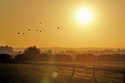 Nederland, Ooijpolder, 6-11-2020 Ondergaande zon boven een deel van de Ooijpolder waar een zonnepark gepland staat .. Gele lucht . Foto: Flip Franssen