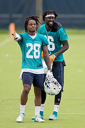 May 31, 2017 - Davie, Florida, U.S. - Miami Dolphins cornerback Bobby McCain (28) and Miami Dolphins defensive back Tony Lippett (36) after practice at Dolphins training facility in Davie, Florida on May 31, 2017. (Credit Image: © Allen Eyestone/The Palm Beach Post via ZUMA Wire)