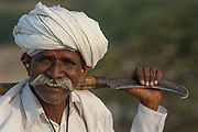 Rabari man wearing his everyday dress which usually includes a white turban, Dhoti (fabric tied into pants) and taylored white jacket and jewellery. The Rabari men often wear heavy ornate earrings and sometimes necklaces. Rabari is a term used for tribal cattle herders. Jewellery is their wealth and they never take it off. The women have very ornate earrings and large silver bangles and plastic upper arm bracelets.  These used to be made of ivory. Many of the Rabari woman also have ornate tatoos on their necks, chests and arms. Designs such as peacocks and other religious symbols are usually done during festivals when the tatoo artists come to town.<br /> Gujarat. Rann of Kutch. SW INDIA