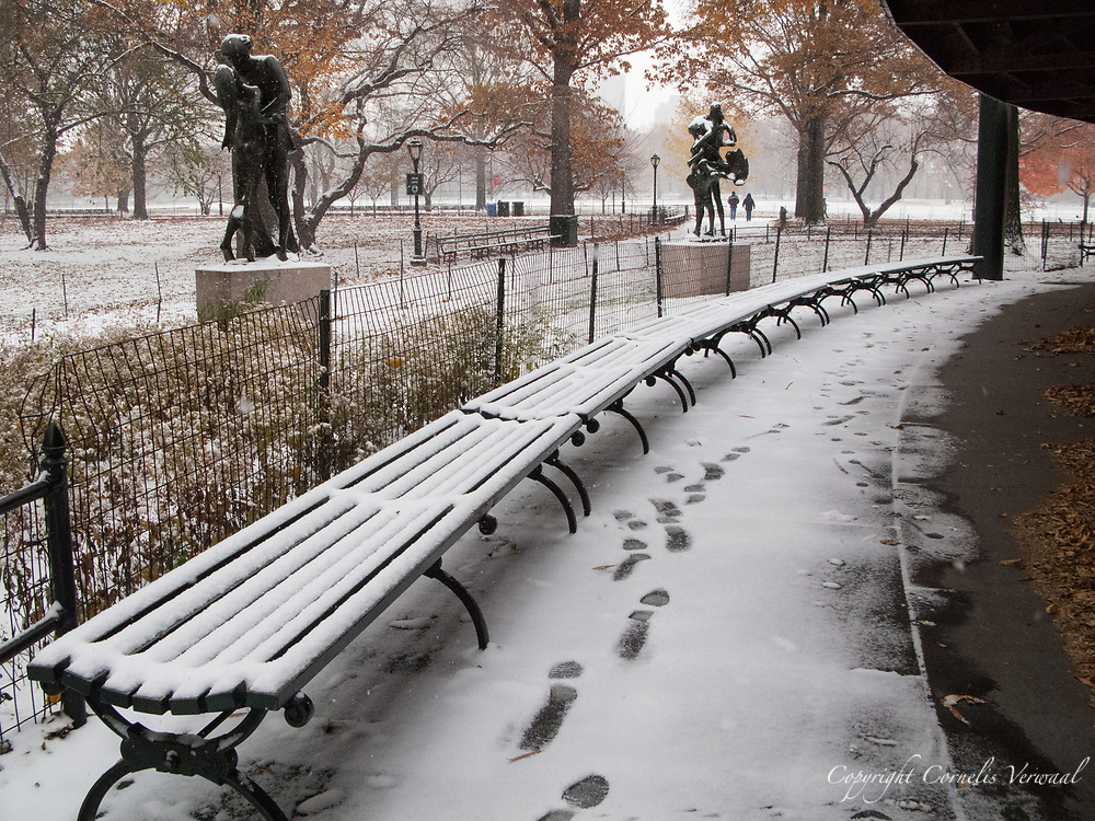 Benches in the snow at Delacorte Theater in Central Park, New YOrk City.