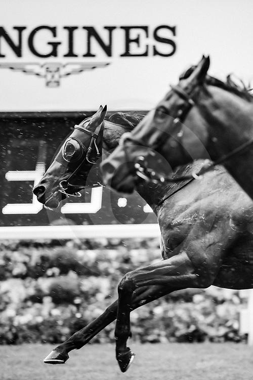 Circus Maximus (R. Moore) wins The St James's Palace Stakes Gr.1 at  Royal Ascot, 18/06/2019, photo: Zuzanna Lupa