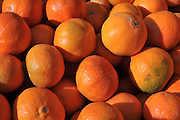 A pile of fresh oranges