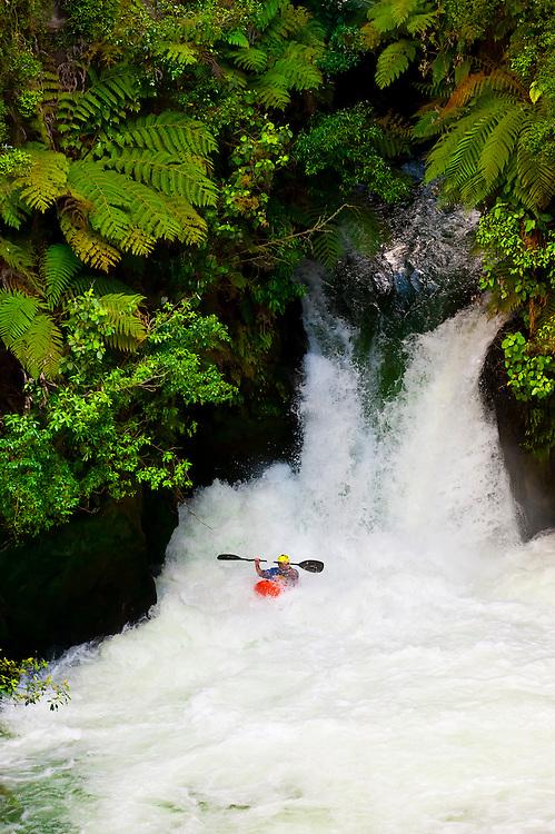 Kayaking off the 7 meter (21 foot) Tutea Falls on the Kaituna River, near Rotorua, on the North Island of New Zealand.