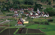 Batak traditional village with church, surrounded by agriculture, rice padis and vegetable crops..Batak Indigenous Christian people living on Samosir Island and nearby Lake Toba in Indonesia. There are some 6 million Christian Batak in Indonesia, the world's largest Muslim country of 237 million people, which has more Muslims than any other in the world. Though it has a long history of religious tolerance, a small extremist fringe of Muslims have been more vocal and violent towards Christians in recent years. ..Batak religion is found among the Batak societies around Lake Toba in north Sumatra. It is ethnically diverse, syncretic, liable to change, and linked with village organisations and the monotheistic Indonesian culture. Toba Batak houses are boat-shaped with intricately carved gables and upsweeping roof ridges, and Karo Batak houses rise up in tiers. Both are built on piles and are derived from an ancient Dong-Son model. The gable ends of traditional houses, Rumah Bolon or Jabu, are richly decorated with the cosmic serpent Naga Padoha carved in wood or in mosaic, lizards, double spirals, female breasts, and the head of the singa, a monster with protruding eyes that is part human, part water buffalo, and part crocodile or lizard. The layout of the village symbolises the Batak cosmos. They cultivate irrigated rice and vegetables. Irrigated rice cultivation can support a large population, and the Toba and the Karo live in densely clustered villages, which are limited to around ten homes to save farming land. The kinship system is based on marriage alliances linking lineages of patrilineal clans called marga. In the 1820's Islam came to the southern Angkola and Mandailing homelands, and in the 1850's and 1860's Christianity arrived in the Angkola and Toba region with Dutch missionaries and the German Rheinische Mission Gesellschaft. The first German missionary caused the Dutch to stop Batak communal sacrificial rituals and music, which was a major blow to the trad
