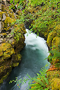 The Rogue River Gorge, Rogue River National Forest, Oregon