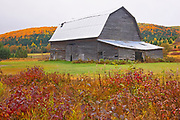 Barn, farmland and Acadian forest in autumn foliage. Near Edmunston. Madawaska County, Rolling hills. <br />Saint-Jacques<br />New Brunswick<br />Canada