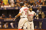 MLB: SEP 12 Red Sox at Rays.  Dustin Pedroia of the Red Sox, celebrates with Xander Bogaerts after he Hits a Home Run in the Third Inning.