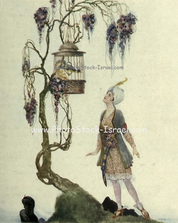 Bird, Said The Princess Periezade, Thou Art My Slave Colour illustration of from the book '  More tales from the Arabian nights, based on the translation from the Arabic ' by Edward William Lane and Frances Jenkins Olcott, Publisher New York, H. Holt and company 1915
