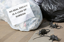 © Licensed to London News Pictures. 08/08/2019. London, UK. Peoples Vote activists dump filled bin bags and plastic rats outside the Cabinet Office. They are protesting against a No Deal Brexit .  Photo credit: George Cracknell Wright/LNP