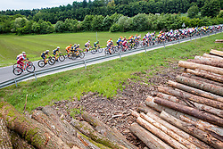 Cyclists and logs during 2nd Stage of 25th Tour de Slovenie 2018 cycling race between Maribor and Rogaska Slatina (152,7 km), on June 14, 2018 in  Slovenia. Photo by Vid Ponikvar / Sportida