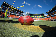 January 31 2016: The official bowl for the Pro Bowl at Aloha Stadium on Oahu, HI. (Photo by Aric Becker/Icon Sportswire)