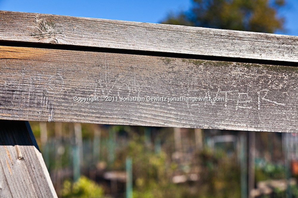 """""""Do Not Enter"""" warning scratched onto wooden gate. WATERMARKS WILL NOT APPEAR ON PRINTS OR LICENSED IMAGES."""