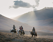 """A group of men ride their yaks back home, to the high pasture settlement of Baiqara. They went to check out the grass level in a wild field nearby, before cutting it for fodder. This type of high altitude settlement is inhabited for about 6 months of the year, from May until October. Guiding and photographing Paul Salopek while trekking with 2 donkeys across the """"Roof of the World"""", through the Afghan Pamir and Hindukush mountains, into Pakistan and the Karakoram mountains of the Greater Western Himalaya."""
