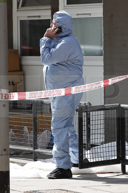 © Licensed to London News Pictures. 13/08/2019. London, UK. An investigator in a protective suit looks over the crime scene at Munster Square in Camden, North London, where a male was stabbed to death last night. The victim, whose age has not yet been released, was pronounced dead at the scene after police were called shortly after 11pm. Photo credit: Peter Macdiarmid/LNP