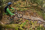 Stowe, Vermont - Mountain biking in fall foliage.