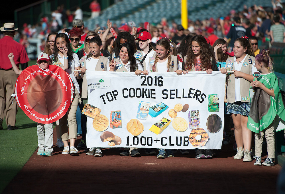 Girl Scouts walk the field at Angel Stadium before the game Saturday.<br /> <br /> <br /> ///ADDITIONAL INFO:   <br /> <br /> angels.0508.kjs  ---  Photo by KEVIN SULLIVAN / Orange County Register  --  5/7/16<br /> <br /> The Los Angeles Angels take on the Tampa Bay Rays at Angel Stadium Saturday.<br /> <br />  5/7/16