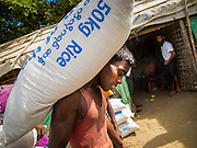 06 NOVEMBER 2014 - SITTWE, RAKHINE, MYANMAR: A Rohingya laborer carries a 50 kilo (102 pounds) sack of rice to a ration distribution in a Rohingya Muslim IDP camp near Sittwe. After sectarian violence devastated Rohingya communities and left hundreds of Rohingya dead in 2012, the government of Myanmar forced more than 140,000 Rohingya Muslims who used to live in and around Sittwe, Myanmar, into squalid Internal Displaced Persons camps. The camps are about 20 minutes from Sittwe but the Rohingya who live in the camps are not allowed to leave without government permission. The government says the Rohingya are not Burmese citizens, that they are illegal immigrants from Bangladesh. The Bangladesh government says the Rohingya are Burmese and the Rohingya insist that they have lived in Burma for generations. They are not allowed to work outside the camps, they are not allowed to go to Sittwe to use the hospital, go to school or do business. The camps have no electricity. Water is delivered through community wells. There are small schools funded by NOGs in the camps and a few private clinics but medical care is costly and not reliable.   PHOTO BY JACK KURTZ
