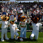 The npower mascots hold up their cards along with the crowd in the terraces duirng the 3rd day of the England v Sri Lanka test match.