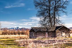 Old log homestead, now deserted near Blackfoot Idaho