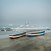 Herons fly away at sunrise next to two boats on a beach.