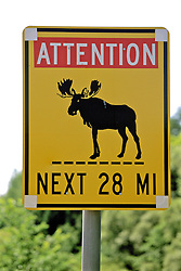 Moose Sign On Maine Highway