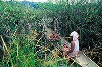 Malaisie, Lac Chini, Femme Orang Asli qui pêche // Malaysia, Chini lake, Orang Asli woman