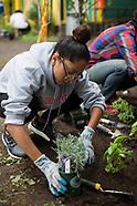 High Line Green Council | Latinos Unidos Garden
