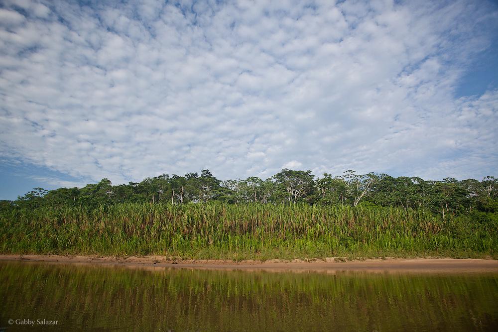 Los Amigos River. Los Amigos Conservation Concession run by the Amazon Conservation Association and the Asociación para la Conservación de la Cuenca Amazónica. The concession is on the Rio Madre de Dios and the Rio Los Amigos. It protects lowland rainforest in the Los Amigos - Tambopata Conservation Corridor and has a biological research station called CICRA.