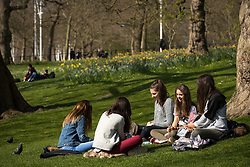 © Licensed to London News Pictures . 28/03/2017 . London , UK . French tourists sit and enjoy sunshine and warm temperatures in St James's Park in London as more spring-like weather persists . Photo credit: Joel Goodman/LNP