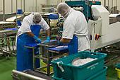 Westfleet Factory