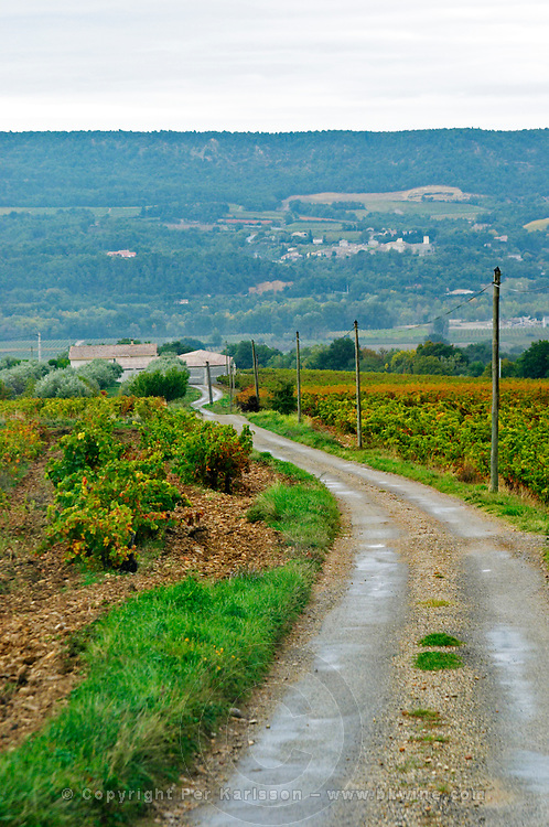 The narrow road to the winery. Domaine Viret, Saint Maurice sur Eygues, Drôme Drome France, Europe