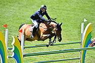 Cameron HANLEY (IRL) riding AIYETORO during the Prix Groupe Barriere Competition of the International Show Jumping of La Baule 2018 (Jumping International de la Baule), on May 19, 2018 in La Baule, France - Photo Christophe Bricot / ProSportsImages / DPPI
