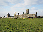 7 - Clare Abbey, Ennis. co. Mayo 1285.JPG