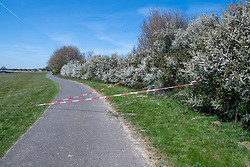 © Licensed to London News Pictures. 26/04/2021. High Wycombe, UK. Cordon tape marks an area following a light aircraft crash at Wycombe Air Park, also known as Booker Airfield. the incident occurred at approximatly 10:30 BST when a plane crashed through bushes at the end of the runway coming to rest in a field. Photo credit: Peter Manning/LNP