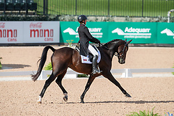 Phoenix Jessica, CAN, Pavarotti<br /> World Equestrian Games - Tryon 2018<br /> © Hippo Foto - Dirk Caremans<br /> 14/09/2018
