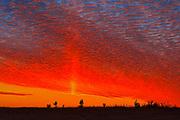 Sun pillar along the Duff Roblin Trail<br />Winnipeg<br />Manitoba<br />Canada