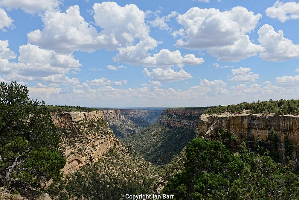 Cliff Canyon,Mesa Verde National Park, Colorado,USA.