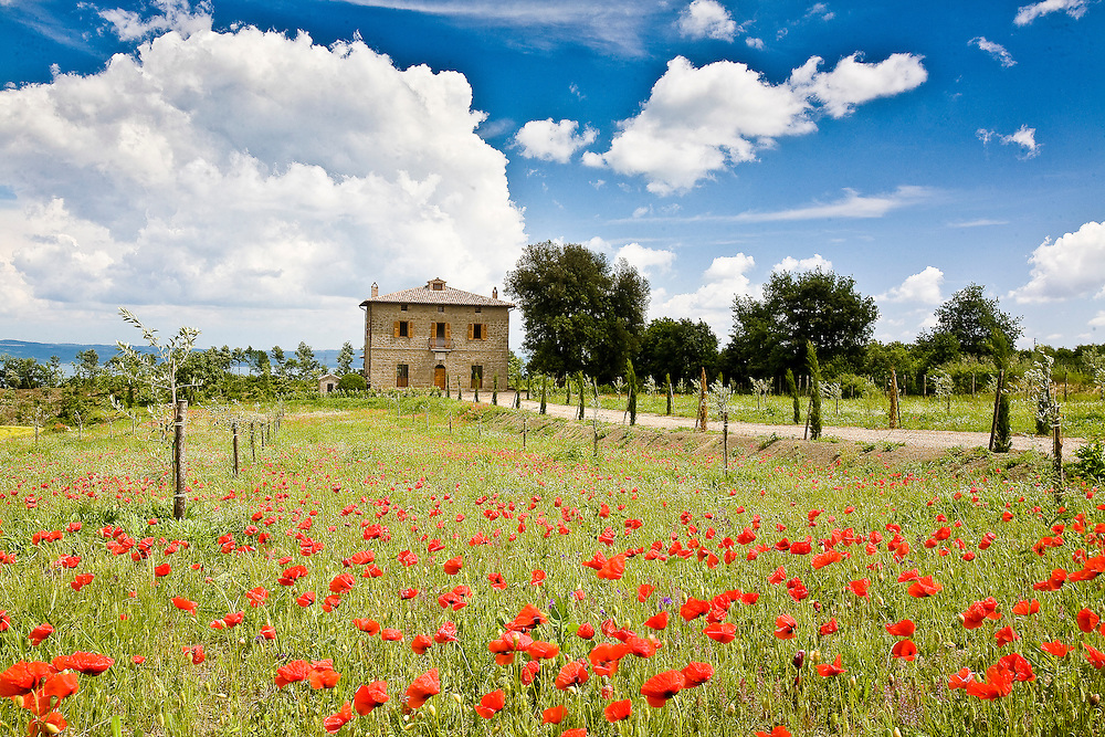 Villa San Donato in Italy, on the border between Tuscany and Lazio.