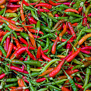 Texture of fresh colourful chili peppers (Luang Prabang (Louangphrabang), Laos - Nov. 2008) (Image ID: 081125-0719412a)