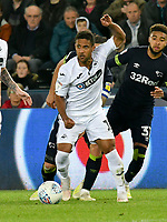 Football - 2018 / 2019 Sky Bet EFL Championship - Swansea City vs. Derby County<br /> <br /> Wayne Routledge Swansea City on the attack, at The Liberty Stadium.<br /> <br /> COLORSPORT/WINSTON BYNORTH