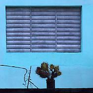 Cactus and window, Ciego de Avila, Cuba.