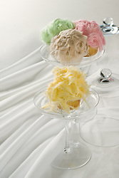 furry cupcakes Desert