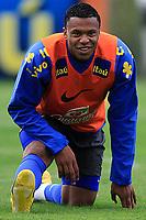 20090603: TERESOPOLIS, BRAZIL - Brazil National Team preparing match against Uruguay. In picture: Julio Baptista. PHOTO: CITYFILES